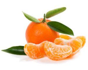 Mandarino Tardivo di Ciaculli – MATURAZIONE: FEBBRAIO – MARZO
