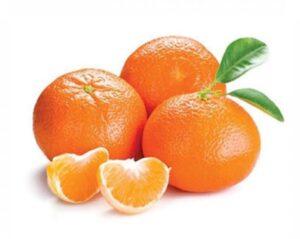 Clementine Nova – Maturazione: Dicembre-Gennaio